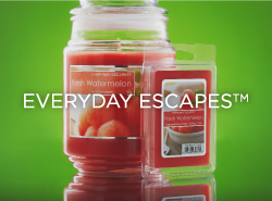 Everyday Escapes